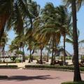 SEOF Tanzania visit